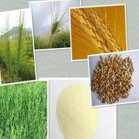陕西中鑫生物供应麦芽提取物 麦芽多糖 10:1比例提取物