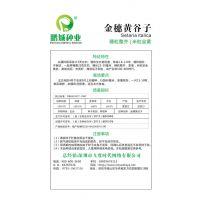 鹏城种业 粮食作物种子 金穗黄谷子种子 穗粒整齐紧凑 100g/包