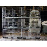 河南郑州现代化养殖大棚鸽子笼生产厂家#出售优质三层鸽子笼的价格