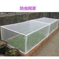 60目防虫网批发 HDPE材质 白色 1-2.5米宽 蔬菜大棚防虫不用农药 安平上善