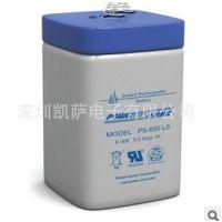 凯萨代理power sonic 进口蓄电池