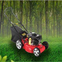 直流电动绿篱机 割灌机 修枝剪 电动篱笆剪茶叶 修剪机