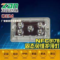 正安防爆 NFE9178固态应急免维护顶灯价格