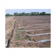 大田土豆滴灌系统 土豆滴灌方案 土豆滴灌规划专业公司