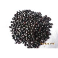 油用牡丹籽 牡丹籽 牡丹种子 药材种苗