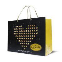 苍南厂家供应多种尺寸 服装手提纸袋 购物手提袋 化妆袋