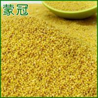 可按客户要求定制 赤峰天然优质小米 散装小米价格优惠