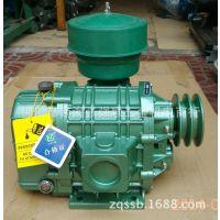 正林罗茨鼓风机ZLE-50LA污水处理设备 活鲜养殖供氧泵 大力士气泵