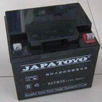 东洋蓄电池12V24AH 东洋免维护蓄电池6FM24 UPS蓄电池 质保三年