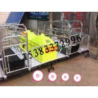 世昌畜牧机械生产2.1*3.6新型双体母猪产床