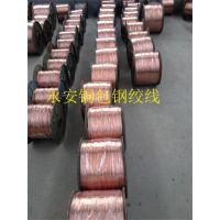 永安系列铜包钢绞线具有的特点应用领域