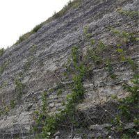 河道石笼网|石笼网报价