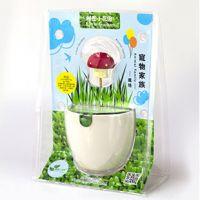 DIY桌面创意盆栽 秘密小花园 宠物家族5款 迷你栽培  zakka礼品