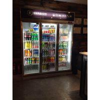 成都水果保鲜柜直销,广元|绵阳风幕柜厂家,德阳便利店啤酒冷藏柜