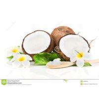 椰子提取物 纯天然 厂家直销 优质高品质 专业提取 现货包邮