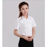 2017新款女式短袖衬衫时尚修身职业衬衣OL通勤展销会销售批发零售雨舜世家