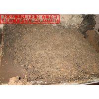 上海闵行区白蚁防治站|静安区白蚁防治所|白蚂蚁怎么杀