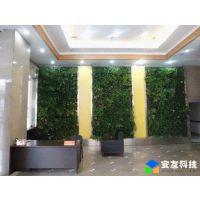立体绿化、墙面绿化、植物墙、植物少维护
