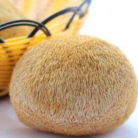 玉甜红猴头菇猴头蘑菇古田特产精选特级6到8cm猴头菇大量批发