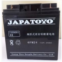 全新东洋蓄电池6-GFM-24 东洋12V24AH铅酸免维护UPS阀控式蓄电池