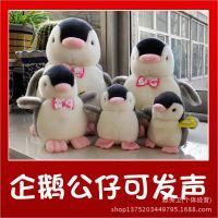 厂家直供出口韩国Amangs企鹅公仔批发正品毛绒企鹅发声小玩具娃娃
