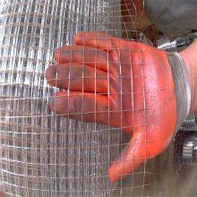 镀锌电焊网生产厂家 热镀锌焊接网 菱型钢丝网