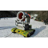 河北冰雪行业设备-滑雪场炮式造雪机多少钱