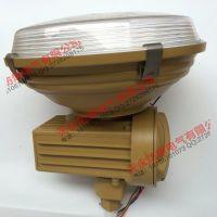 SBD1105-YQL120A吊杆式防爆工厂灯