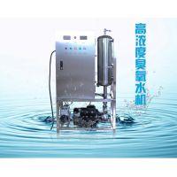 YT-S-20A水消毒设备管道冲洗杀菌高浓度臭氧水机生成器
