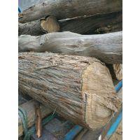 优质杜梨木柘木油椿木等原木