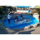 鱼池漆 泳池漆 环氧树脂灌浆料 水泥构件裂缝专用灌注胶