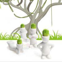 批发2014超可爱小花迷青草种植迷你植物盆栽 草娃娃桌面装饰摆饰