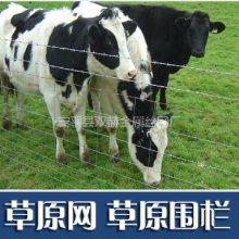 安平牛栏网厂 牛栏网规格 1.2米畜牧圈养网