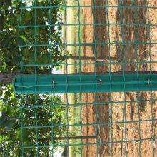 厂家批发养殖围栏铁丝网 圈地包塑铁丝网 浸塑荷兰网