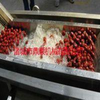 厂家直销 大枣气泡清洗机 果蔬清洗机生产线 中药材清洗机设备