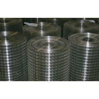【100%现货】不锈钢电焊网|镀锌电焊网|不锈钢网