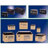 贵州蓄电池NP(12v)代理0851-85819978
