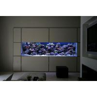 大型生态鱼缸 观赏生态鱼缸 创意生态鱼缸 玻璃生态鱼缸