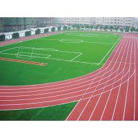 供应专业塑胶跑道施工,专业幼儿园塑胶跑道施工,专业幼儿园地垫施工