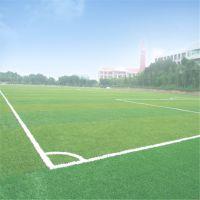 广东深圳人造草坪每平米价格 人造草坪足球场工程施工 人造草坪材料厂家