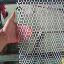 养鸭白网 塑料养殖网 小孔养殖网