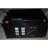梅兰日兰蓄电池M2AL12-40价格参数