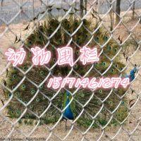 湖北动物放养地勾花网隔离效果,,动物园驯化区常用安全网栏