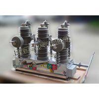 特价优惠活动ZW43-12户外高压真空断路器