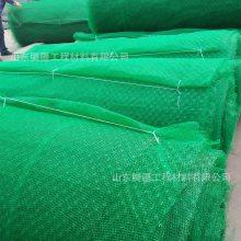 山东腾疆生产三维植被网 固土三维网绿化护坡EM2-EM5各种土工材料