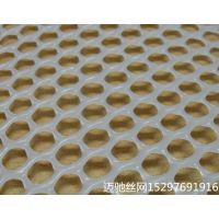 迈驰厂家供应1.2孔绿色养殖塑料网、育雏网价格