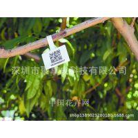 植物园森林大型观赏果树简介说明标签材料轻盈坚韧防水防腐蚀撕不破