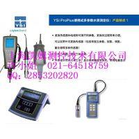 供应美国YSI维赛PH电极605101(无连接线)急速报价