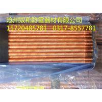 自主生产厂家铜包钢接地极质优价廉