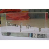 透明水晶胶内藏工艺品有机玻璃工艺品 亚克力水晶胶内埋模型实物压克力制品